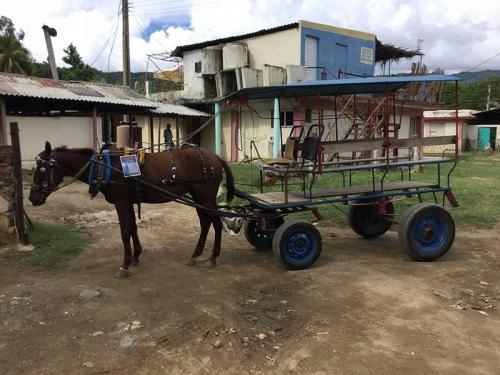 Rural Cuban Transportation